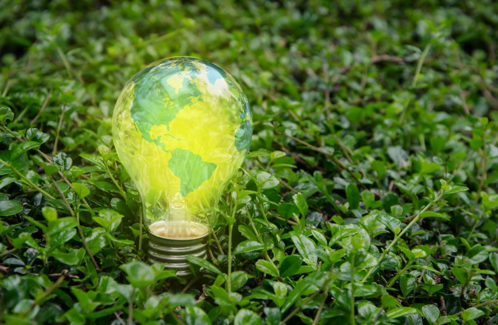 Green lawn image with glowing light bulb covered in map of the world